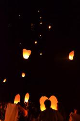 Lanterns_CamerynBrock
