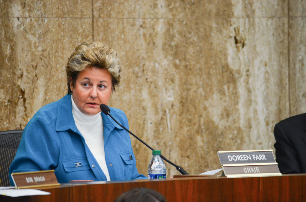 Doreen Farr speaks at the LAFCO meeting on Feb. 19. Christina DeMarzo/Daily Nexus